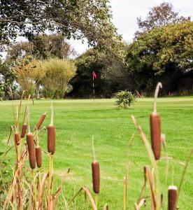 cfon golf club 3